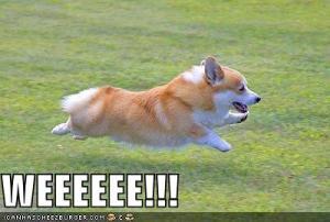 Weeeeeeeeeeeeeeeee!!